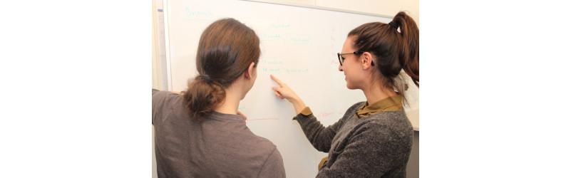 Gesucht: ab sofort ++WERKSTUDENT++ im Business Development bei der logicline GmbH in Sindelfingen