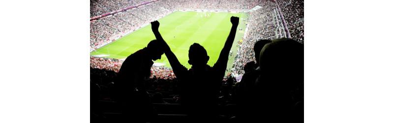 Aushilfen für das Länderspiel Deutschland gegen Frankreich gesucht! Werden sie es schaffen?!